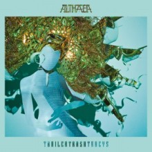TTTs - Althaea packshot hi res.jpg